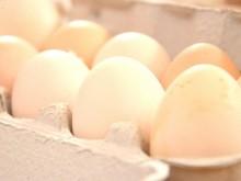 Tanyasi tojás