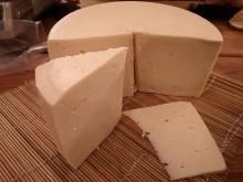 Félkemény trappista sajt (tehéntejből)
